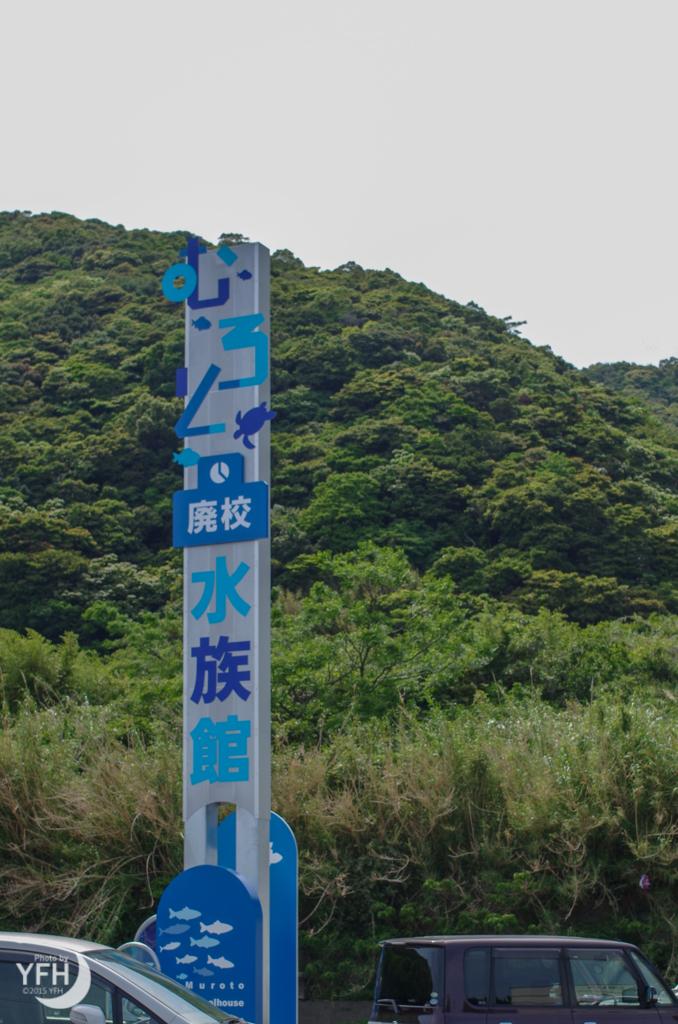 f:id:shironagassu:20180506174805j:plain