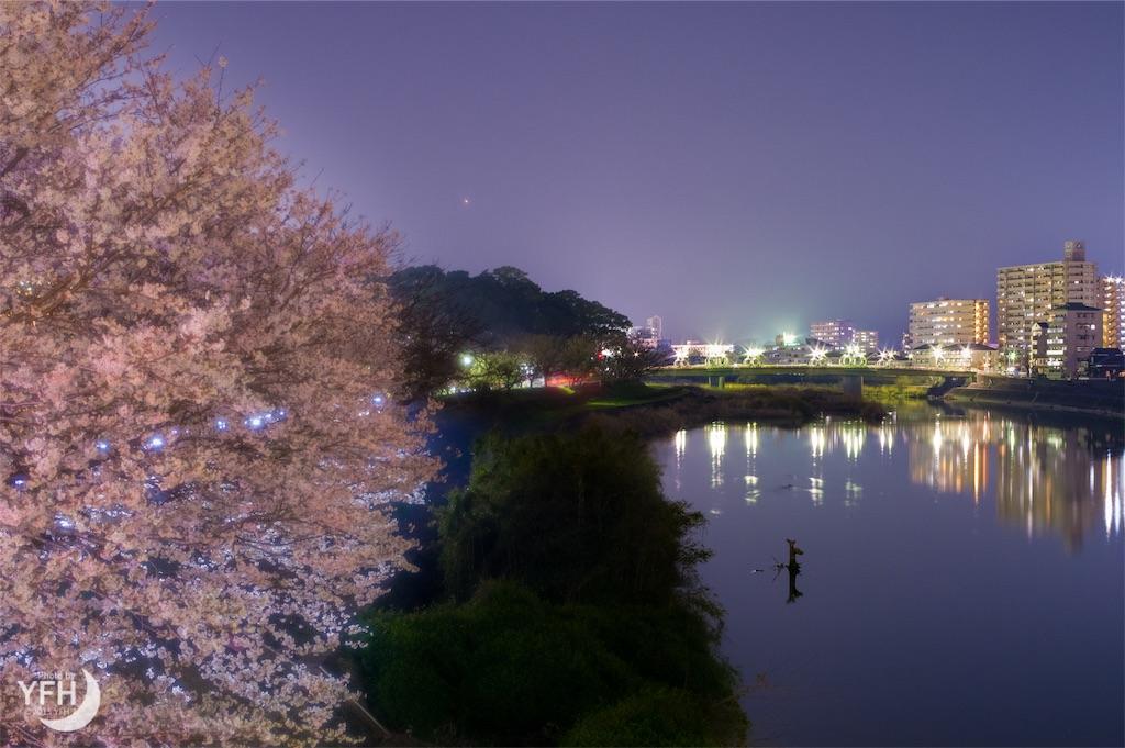 f:id:shironagassu:20190109155954j:plain