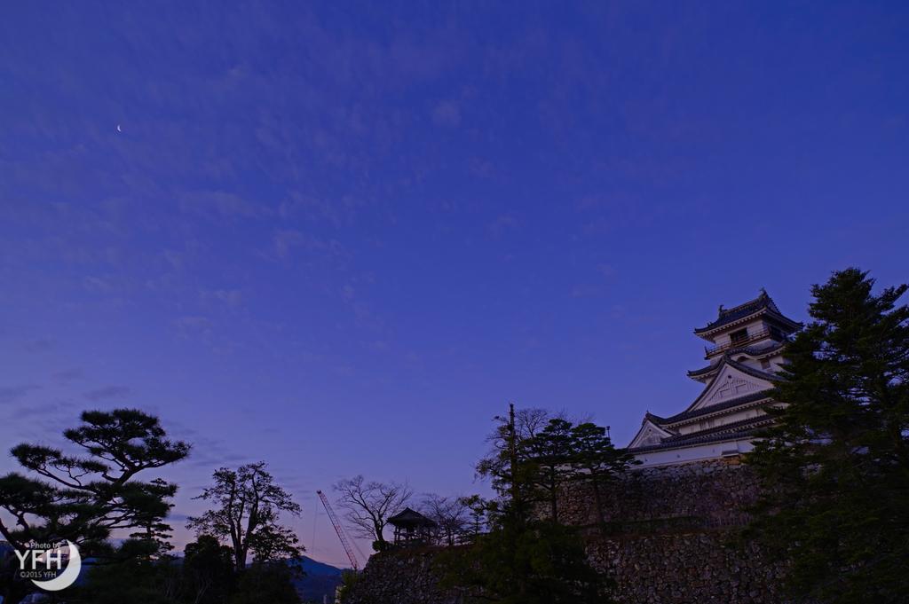 f:id:shironagassu:20190130203225j:plain