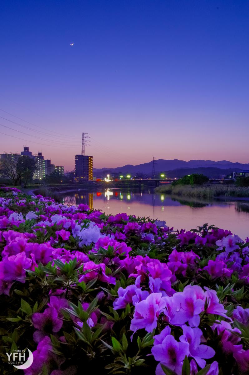 f:id:shironagassu:20191111002744j:plain