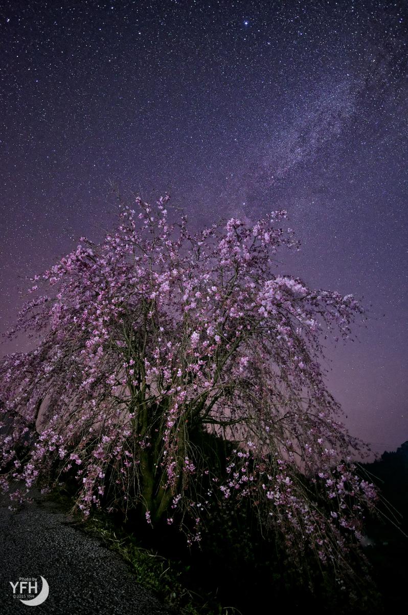 f:id:shironagassu:20200711000827j:plain