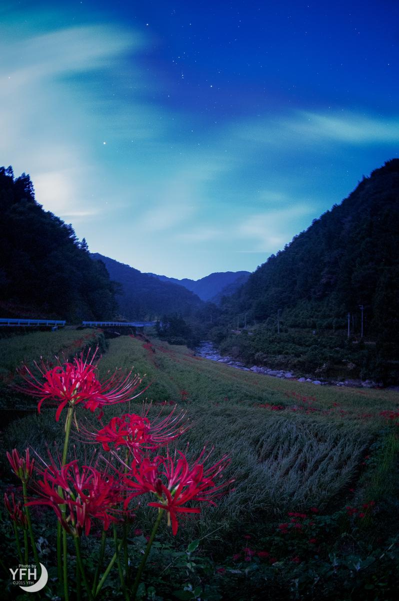 f:id:shironagassu:20200711005624j:plain