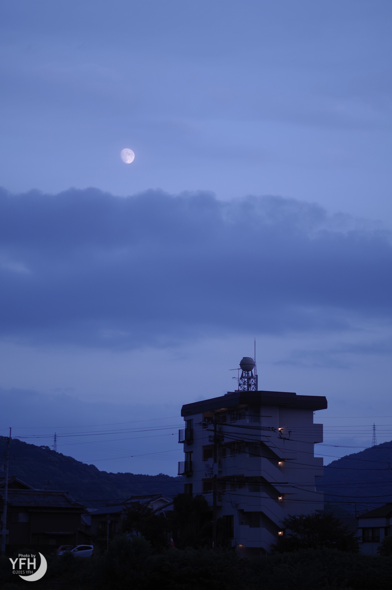 f:id:shironagassu:20200831191131j:plain