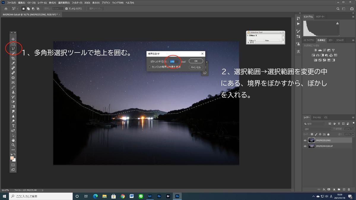 f:id:shironagassu:20210118202006j:plain