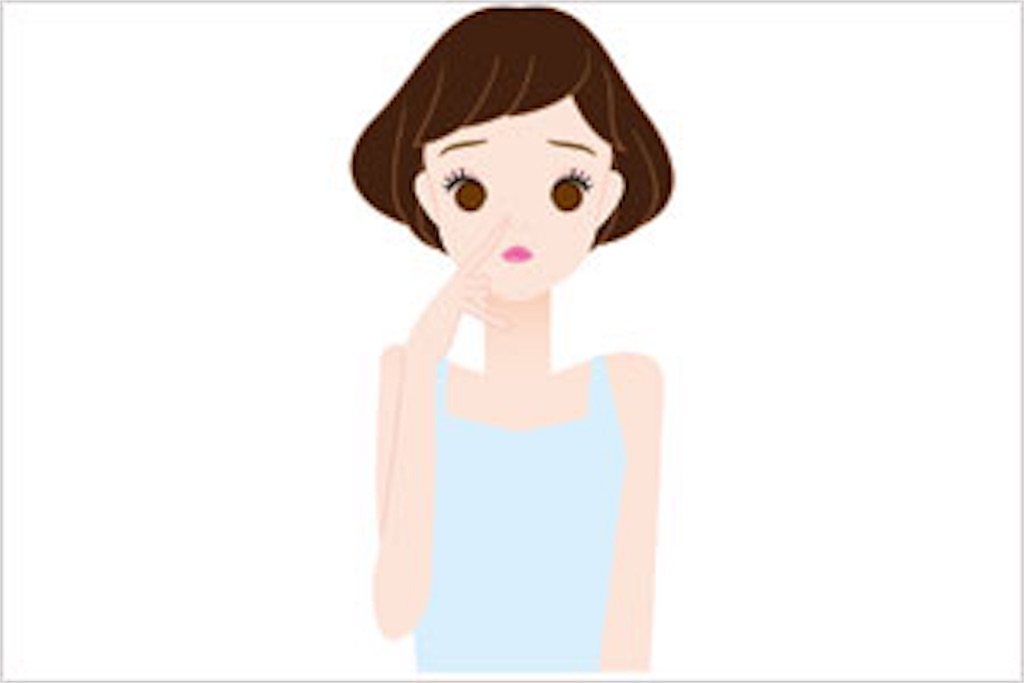 f:id:shirono-blog:20161228131411j:image