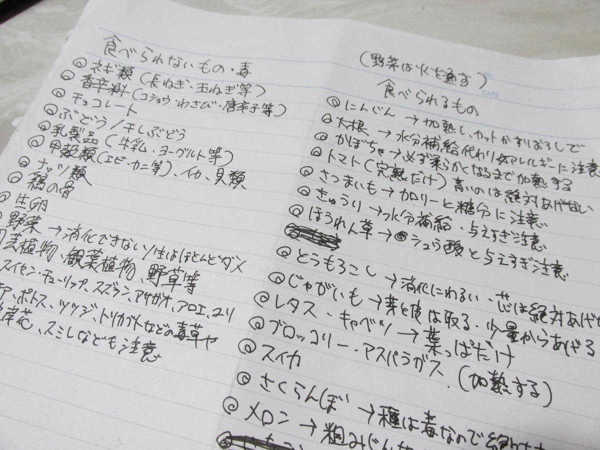 f:id:shiroshibainusann:20201210035945j:plain