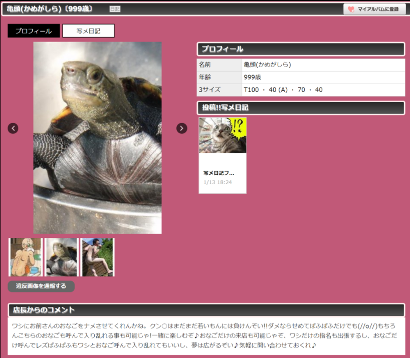 f:id:shirotodotei:20180422205016p:plain
