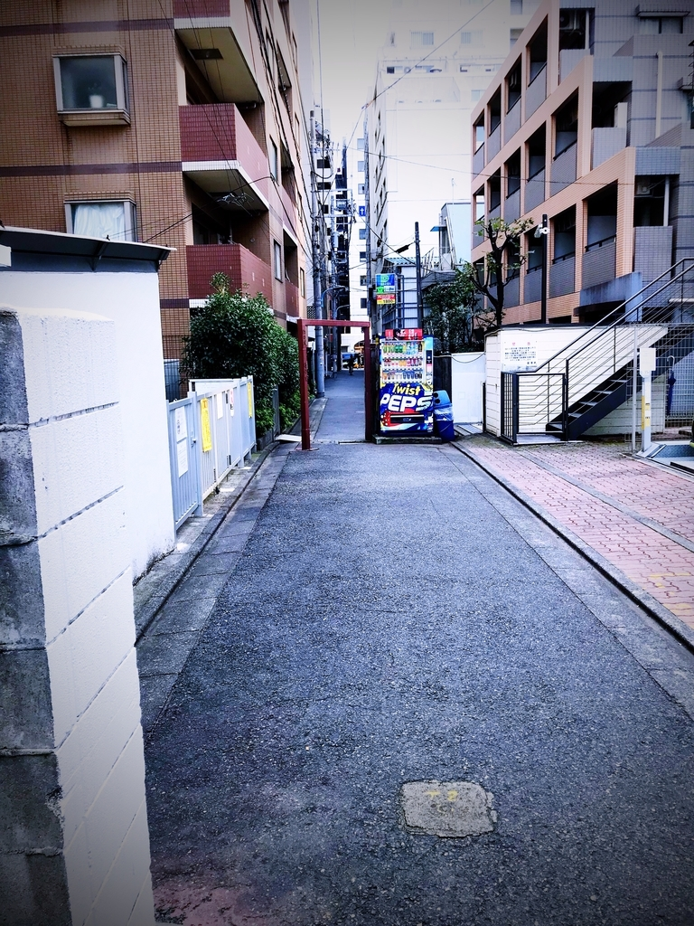f:id:shirotodotei:20181216205348j:plain
