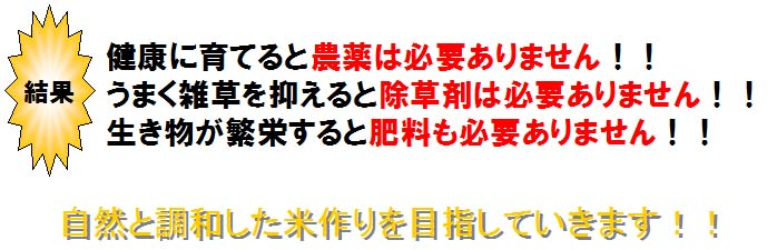 f:id:shirotofarm:20150519235835j:plain