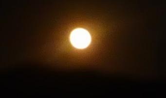 f:id:shirotofarm:20171105233603p:plain