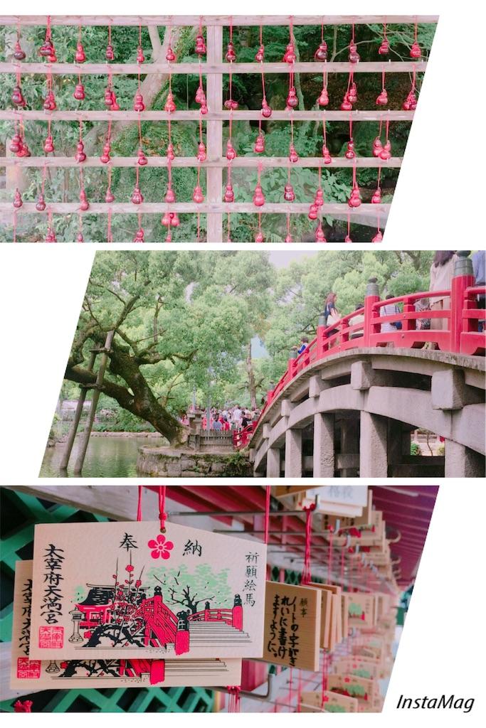 f:id:shirotomidori:20170622061547j:image