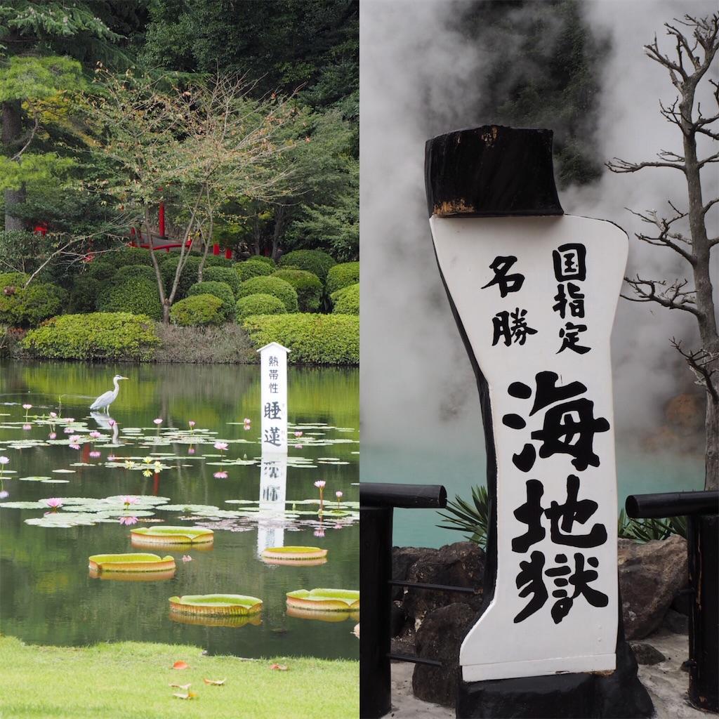 f:id:shirotomidori:20171015210720j:image