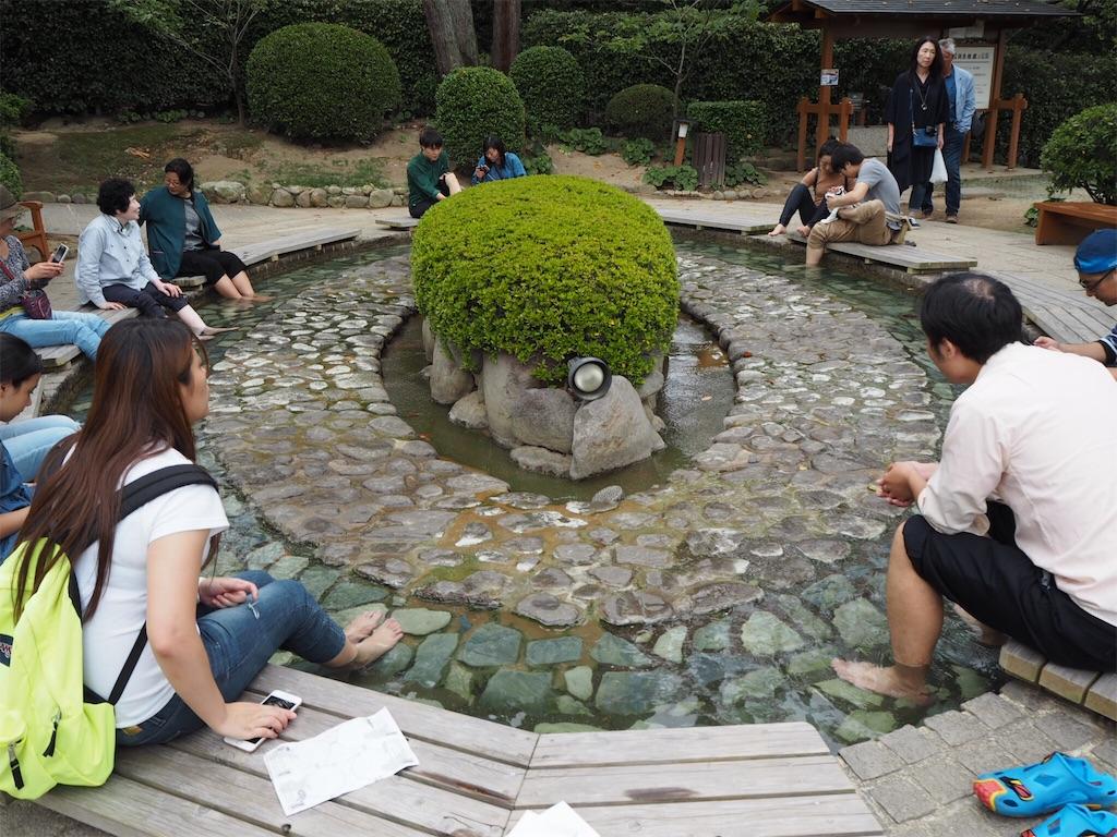 f:id:shirotomidori:20171015211802j:image