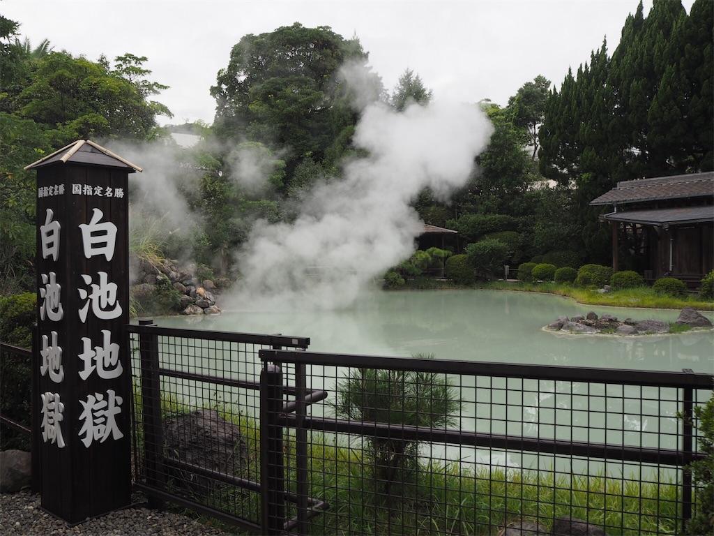 f:id:shirotomidori:20171019080541j:image