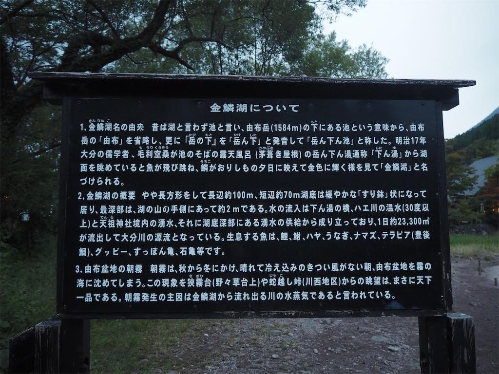 f:id:shirotomidori:20171019201250j:image