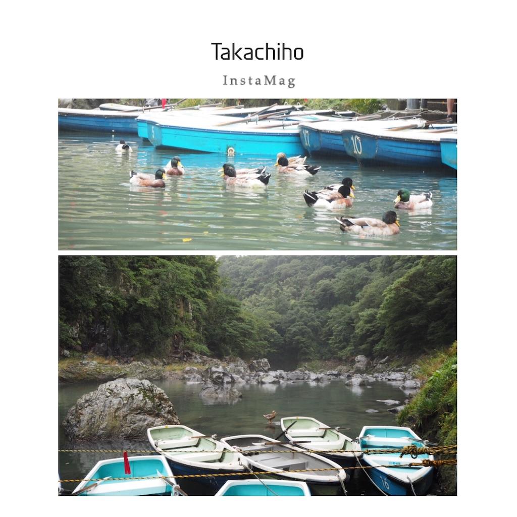 f:id:shirotomidori:20171021004355j:image