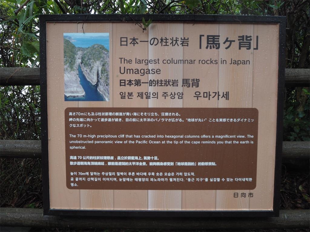 f:id:shirotomidori:20171025063607j:image