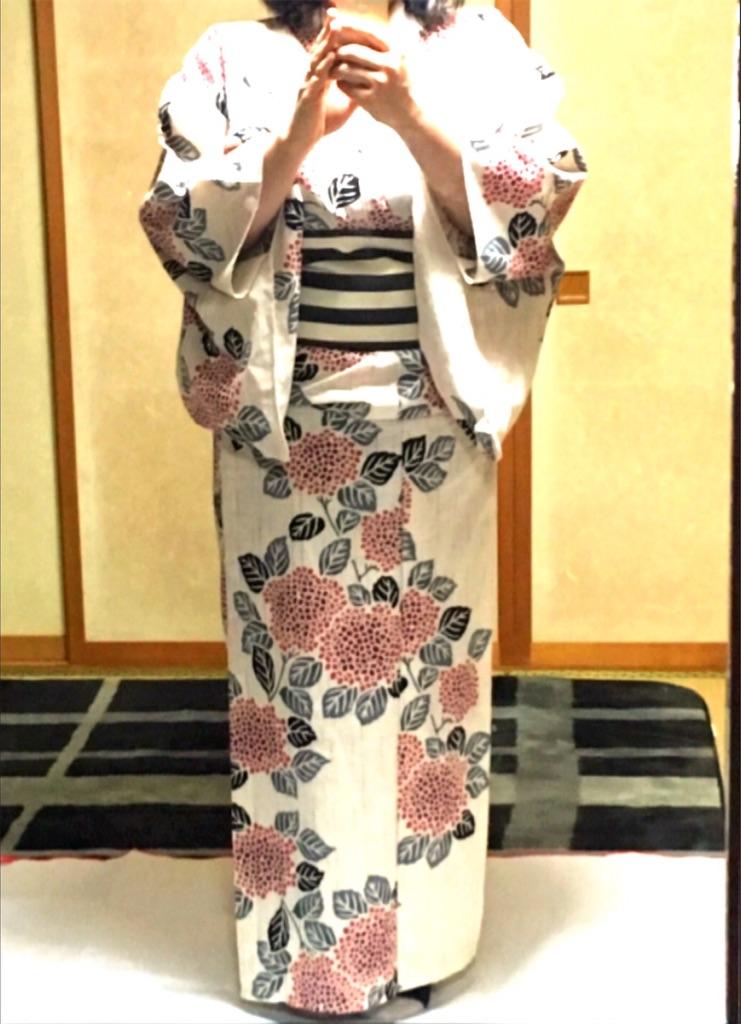 f:id:shirotomidori:20181213003626j:image