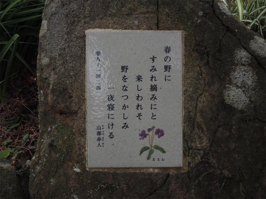 f:id:shirotomidori:20190205001508j:image