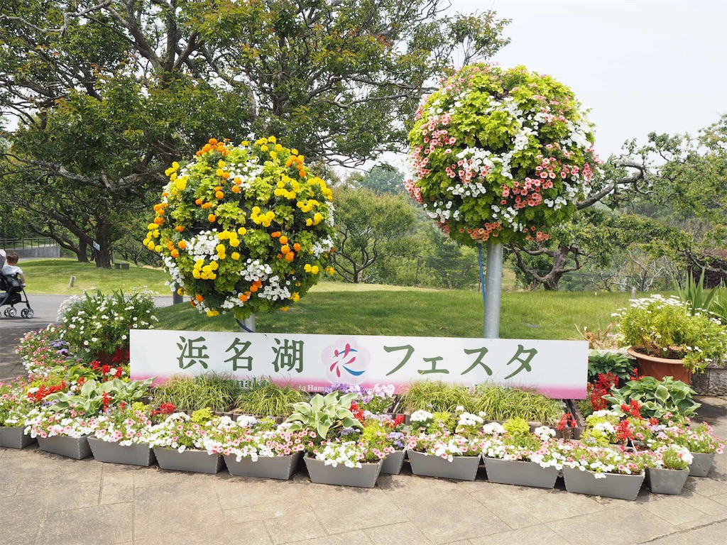 f:id:shirotomidori:20190605020215j:image