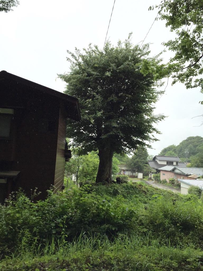 f:id:shirotonakama:20160729020301j:image