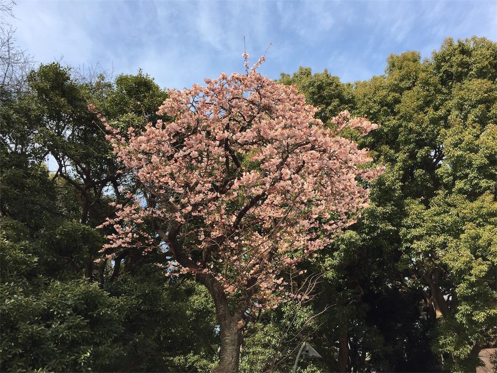 f:id:shirotonakama:20180211091129j:image