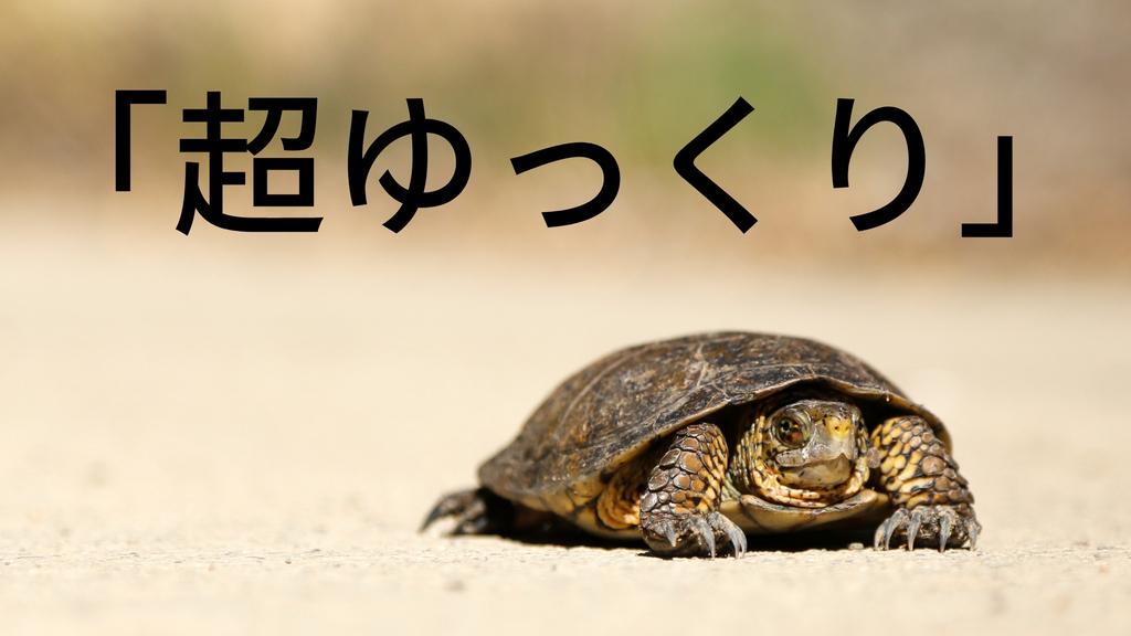 f:id:shirouto-runner:20190121154906j:plain