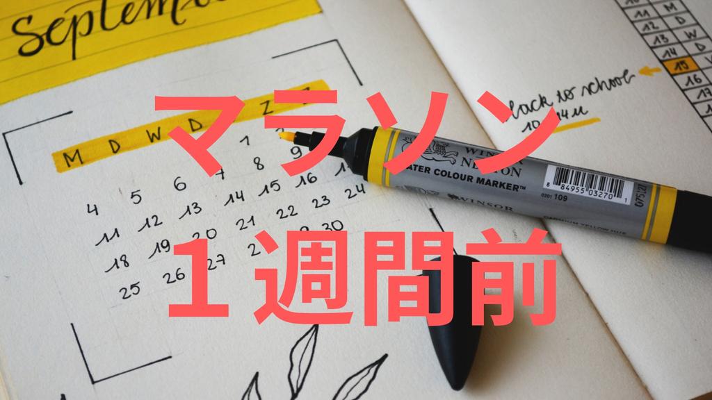 f:id:shirouto-runner:20190224161032j:plain
