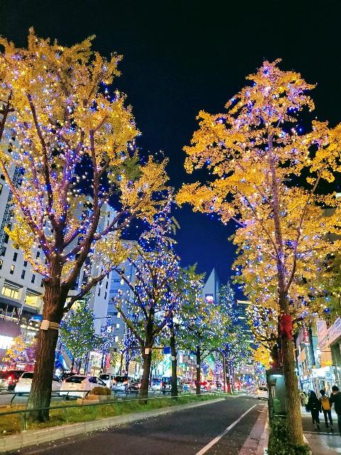 f:id:shiroutotabi:20191125052316j:image