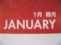 シーガル ビニールポケットカレンダー 2008 本体右上の月名表記部分