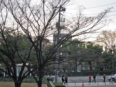 f:id:shirusu:20090118164006j:image