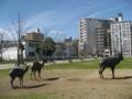 [東千田公園]鹿のオブジェと公園の西側方面を望む
