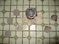 [風呂場]床面、はがれたタイル 大:5枚、小:1枚