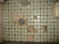 [風呂場]床面 はがれたタイル 大:29枚 小:2枚