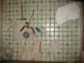 [風呂場]床面 はがれたタイル 大:58枚 小:9枚