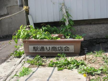「駅通り商店会」プランター