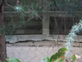 [旧広島市民球場]外野スタンドの石垣とクラック
