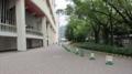 [旧広島市民球場]南側にあるパイロンとバー