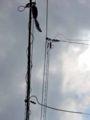 [NTT西日本]電話線・光ファイバー