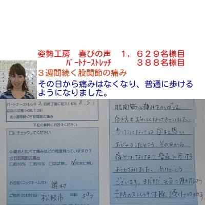 f:id:shiseik:20160812055912j:plain