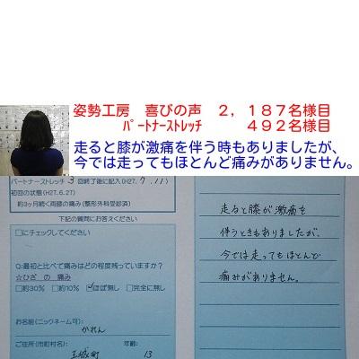 f:id:shiseik:20160828065832j:plain