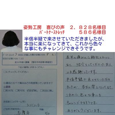 f:id:shiseik:20160904083441j:plain