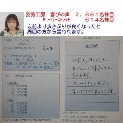 f:id:shiseik:20161217172257j:plain