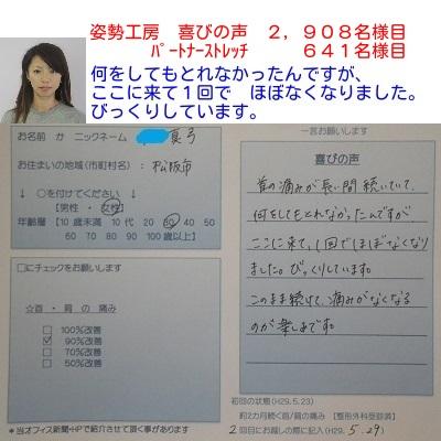 f:id:shiseik:20170529153728j:plain