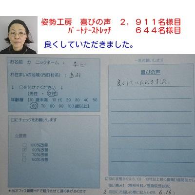 f:id:shiseik:20170618092614j:plain