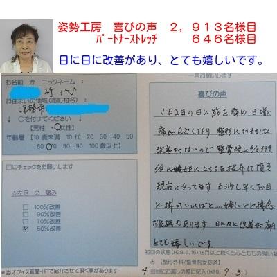 f:id:shiseik:20170703131439j:plain