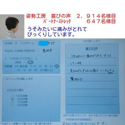 f:id:shiseik:20170709054022j:plain