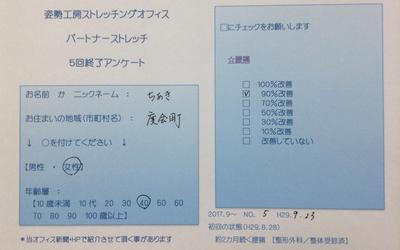 f:id:shiseik:20170924060125p:plain