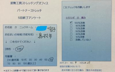 f:id:shiseik:20171028055502p:plain