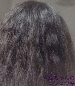 f:id:shishi-book:20200514011702j:plain
